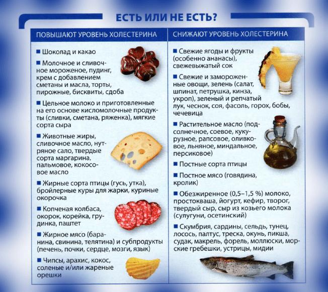 Продукты, повышающие и снижающие холестерин