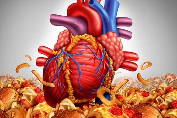 Вредная пища повышает холестерин в крови