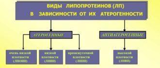 Атерогенные и антиатерогенные липопротеины
