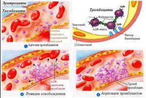 Препарат стимулирует синтез азота