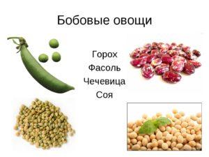 Бобовые овощи