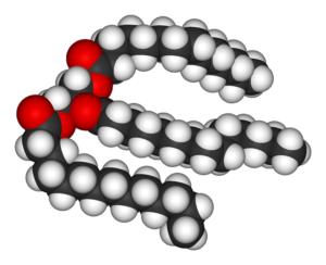 Триглецириды
