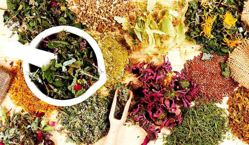Травяные сборы для снижения давления